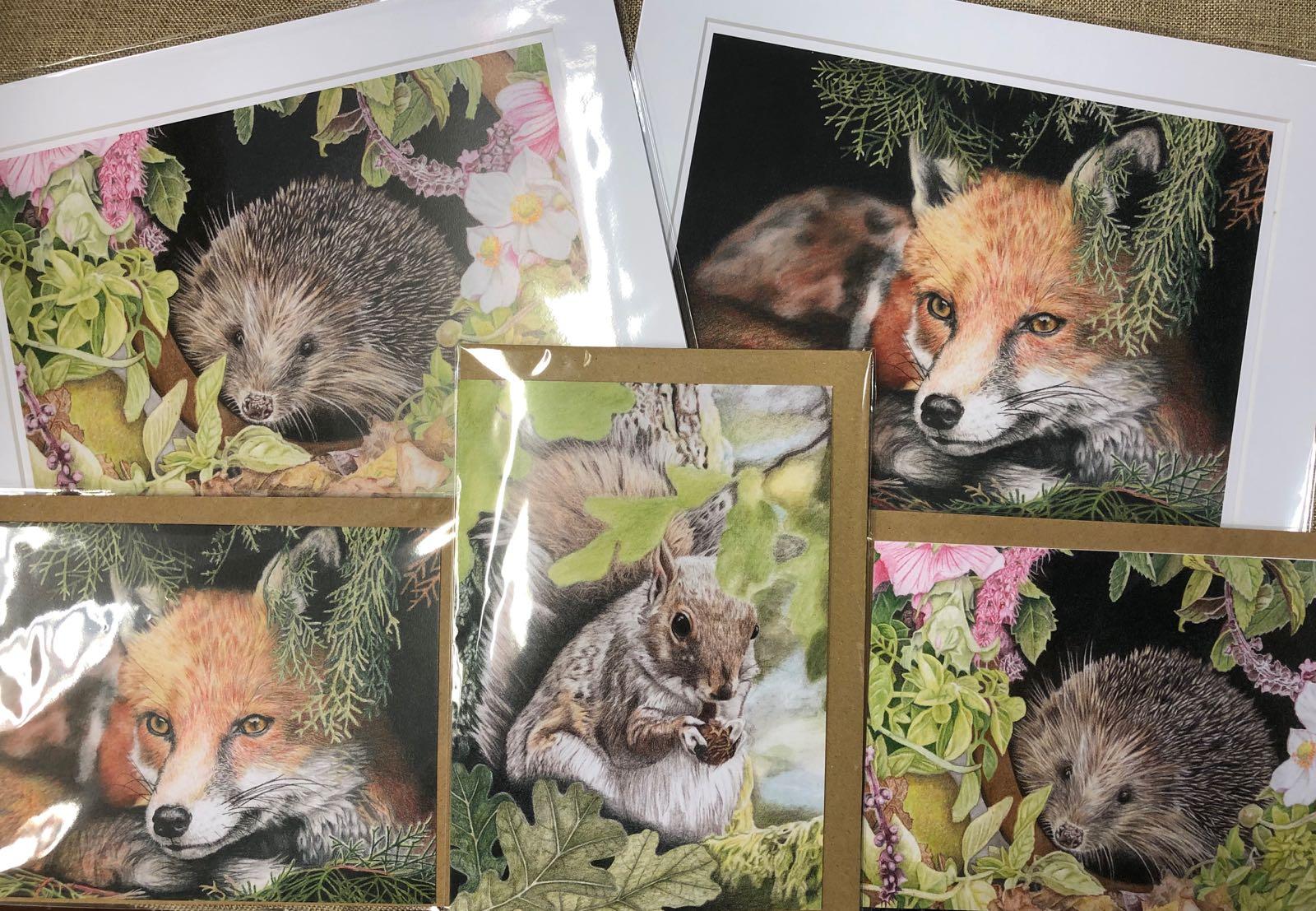 'Peek a boo' cards and prints - Sarah Rees