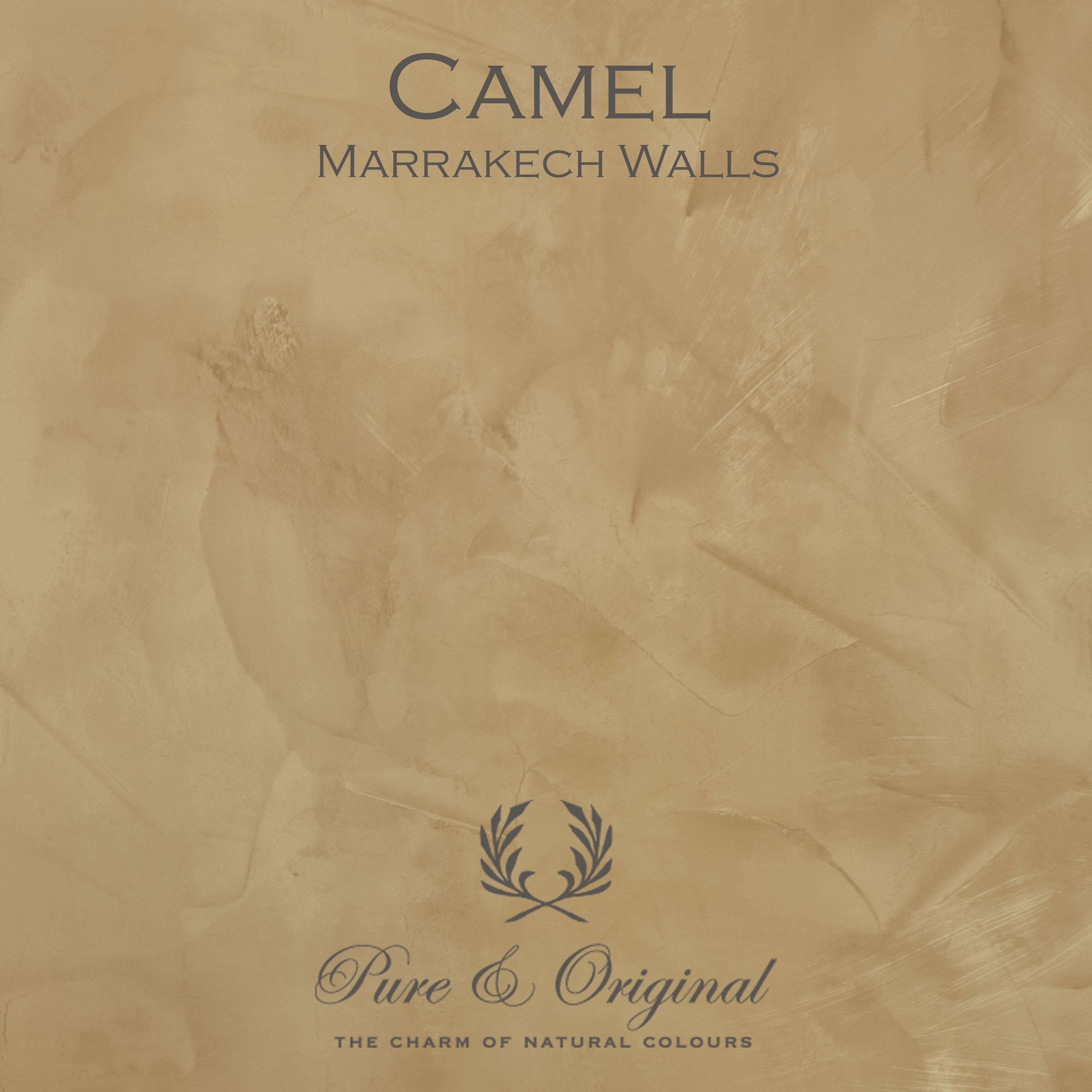 Kulör Camel, Marrakech Walls