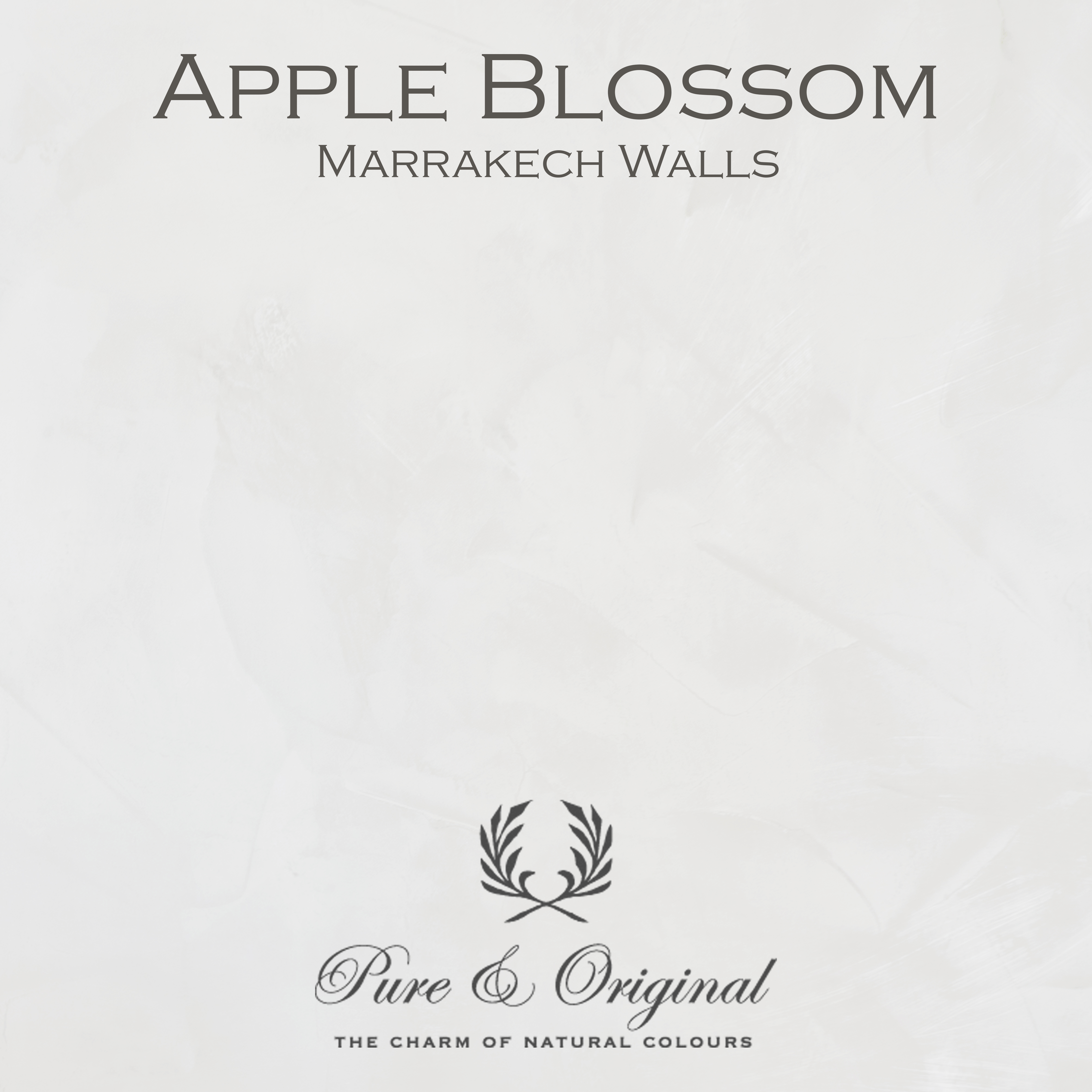 Kulör Apple Blossom, Marrakech Walls  kalkfärg