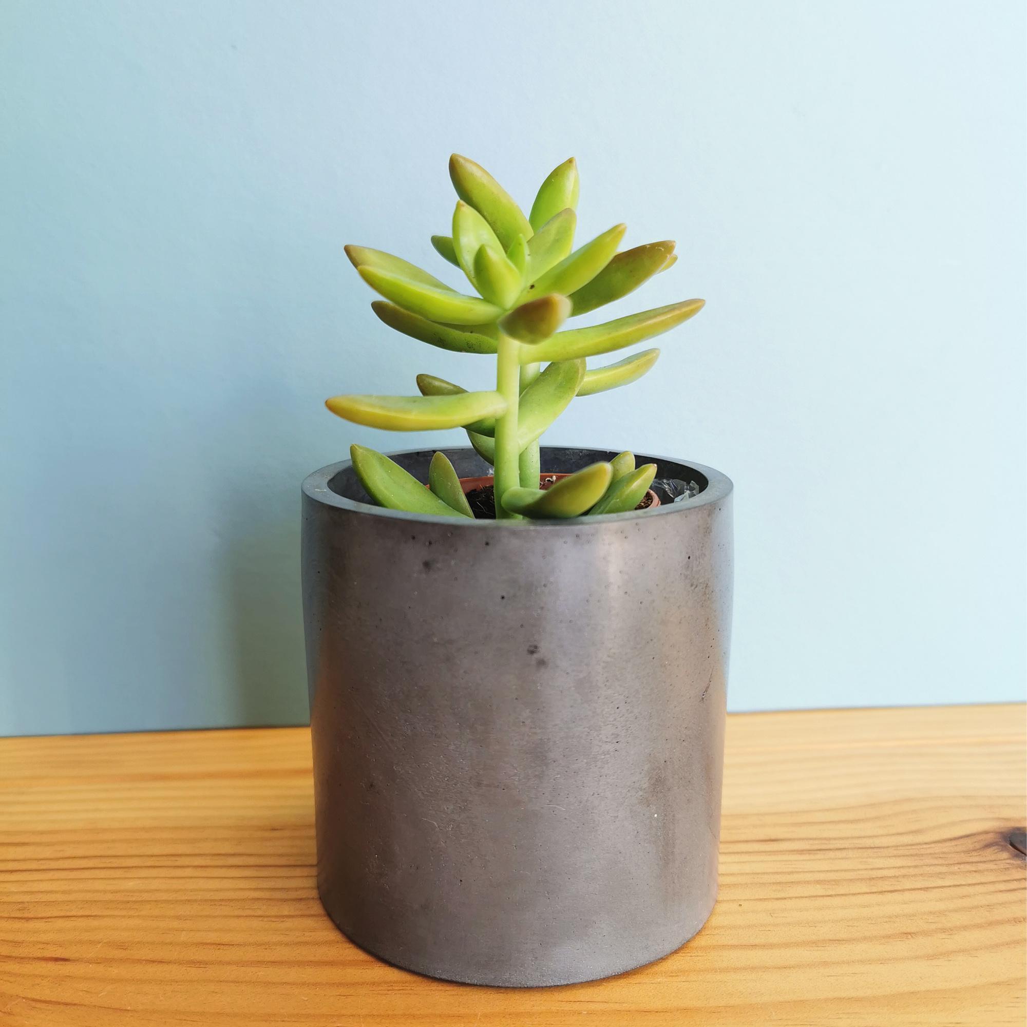 Concrete Cup by Zoe Scott Designs