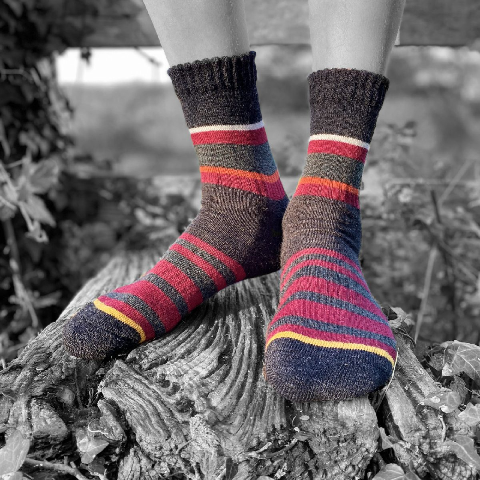 Merino Wool Stripe Sock by Pittch