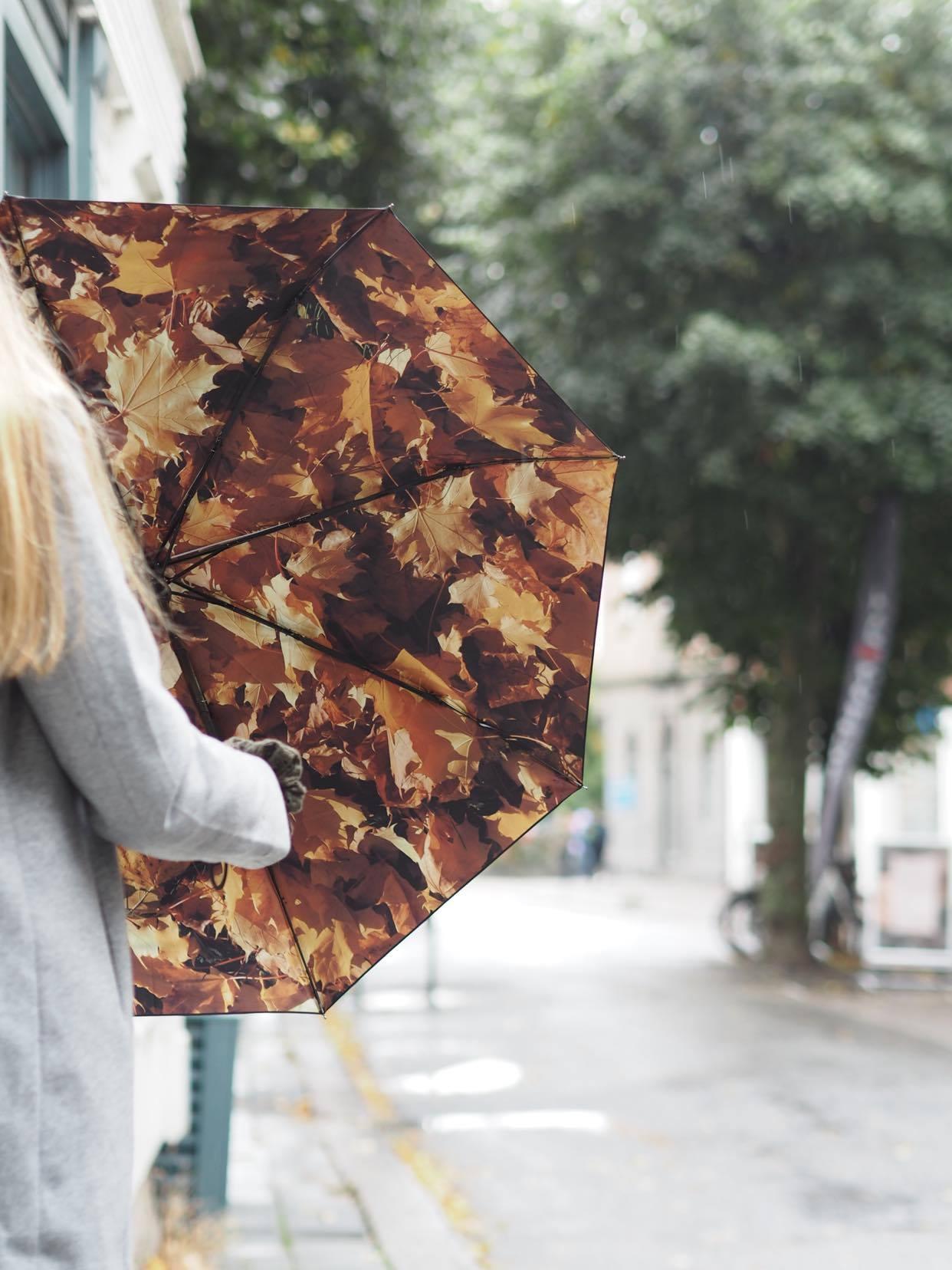 Paraply, Höst