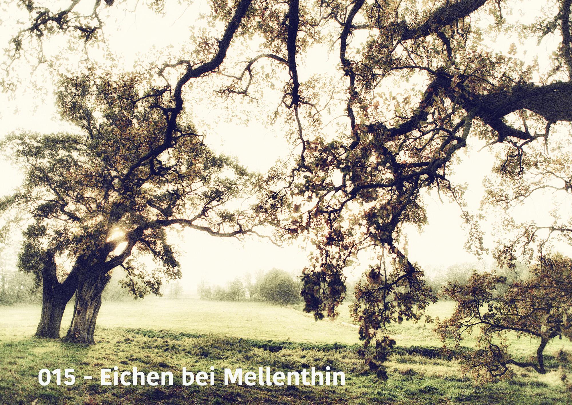 Usedom Motive (1) Canvasleinwanddruck auf Keilrahmen 60 x 80