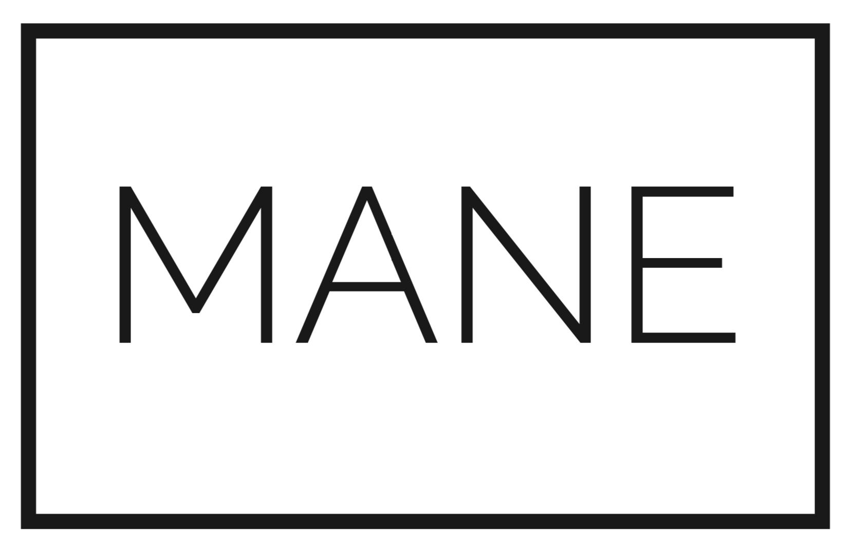 MANE Salon Basingstoke Ltd