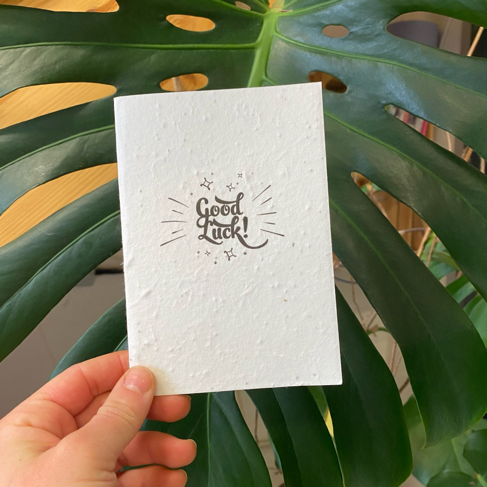 Good Luck | Plantable Seed Paper Cards