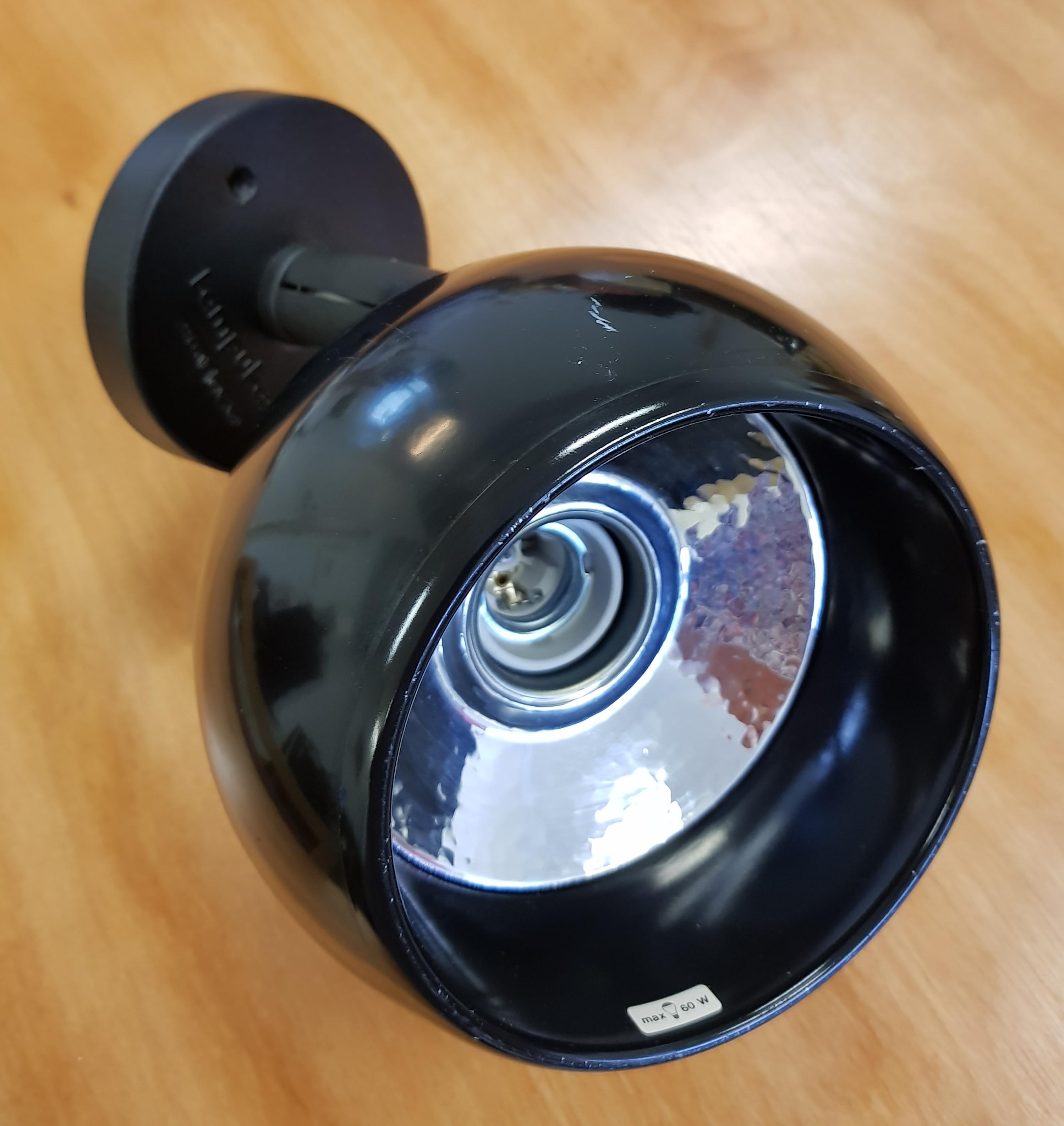 Musta lampukas pallovalaisin
