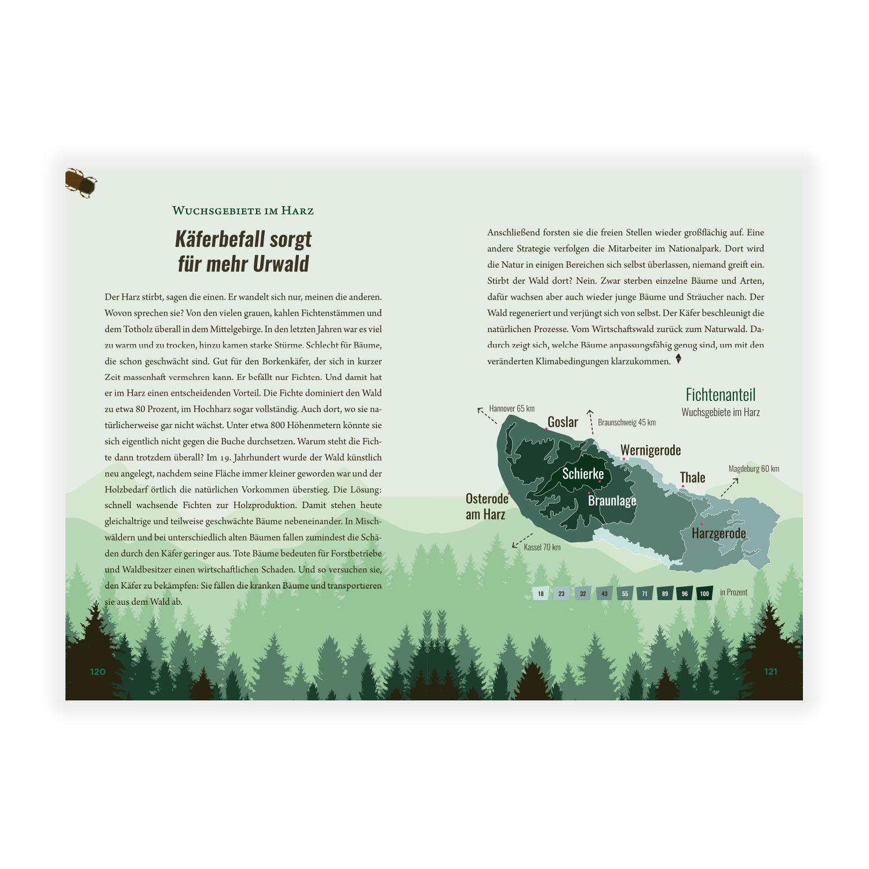 KATAPULT - Wie man illegal einen Wald pflanzt
