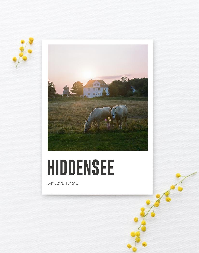 Lomoherz - Postkarte Hiddensee Pferdewiese