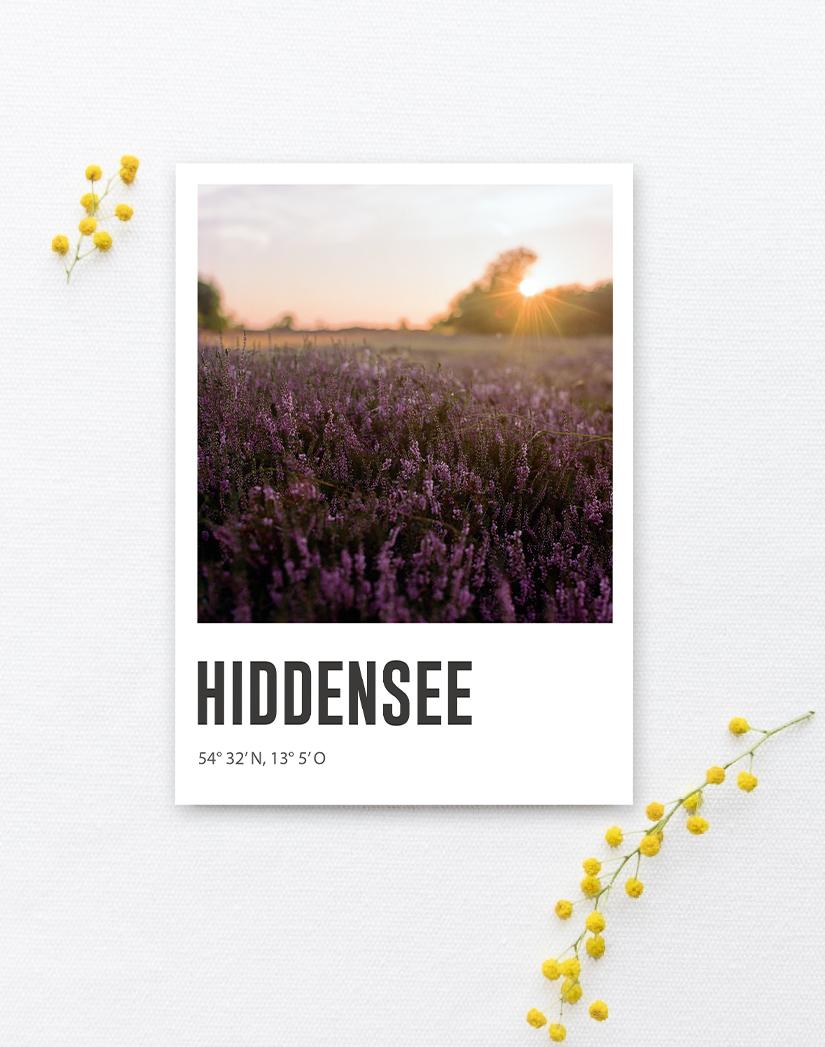 Lomoherz - Postkarte Hiddensee Heide