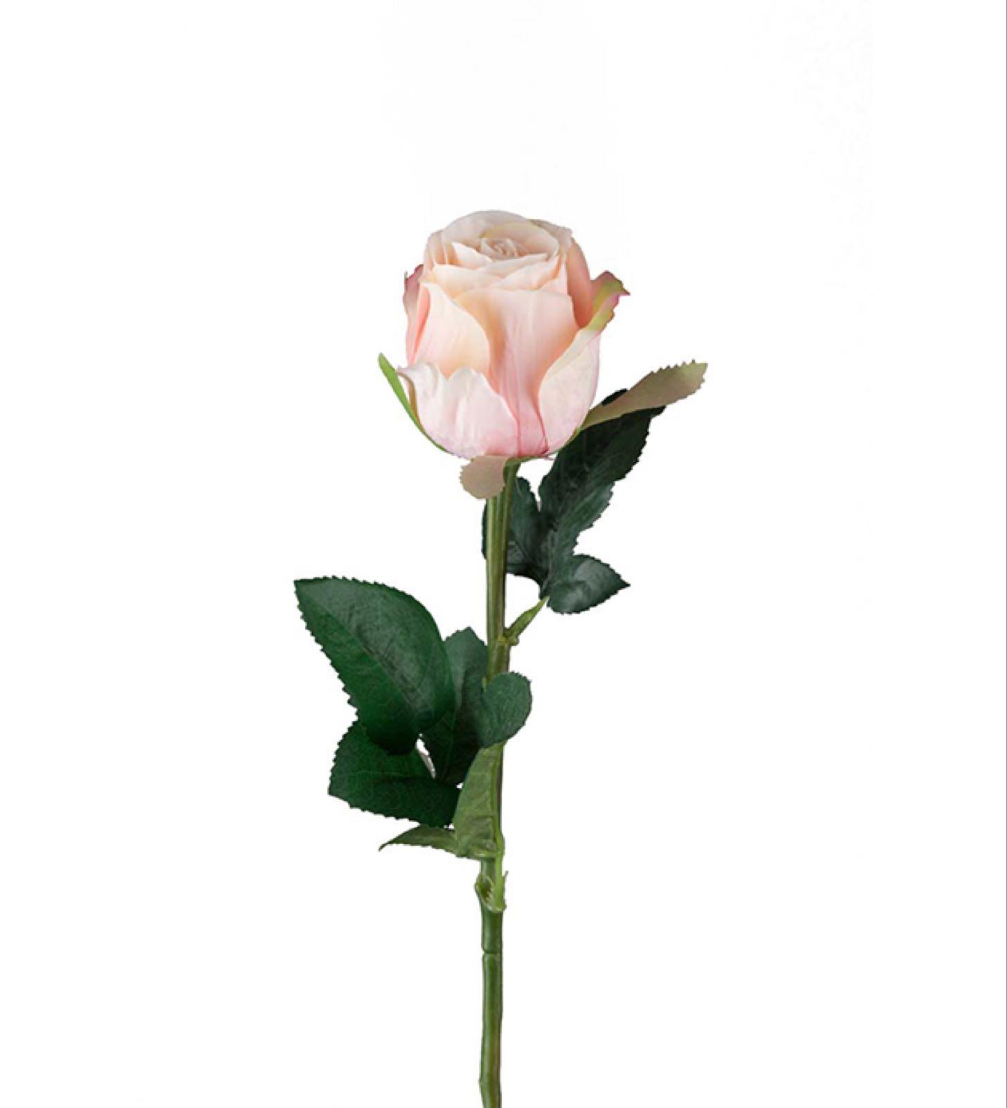 Rosa Rose, Kunstig