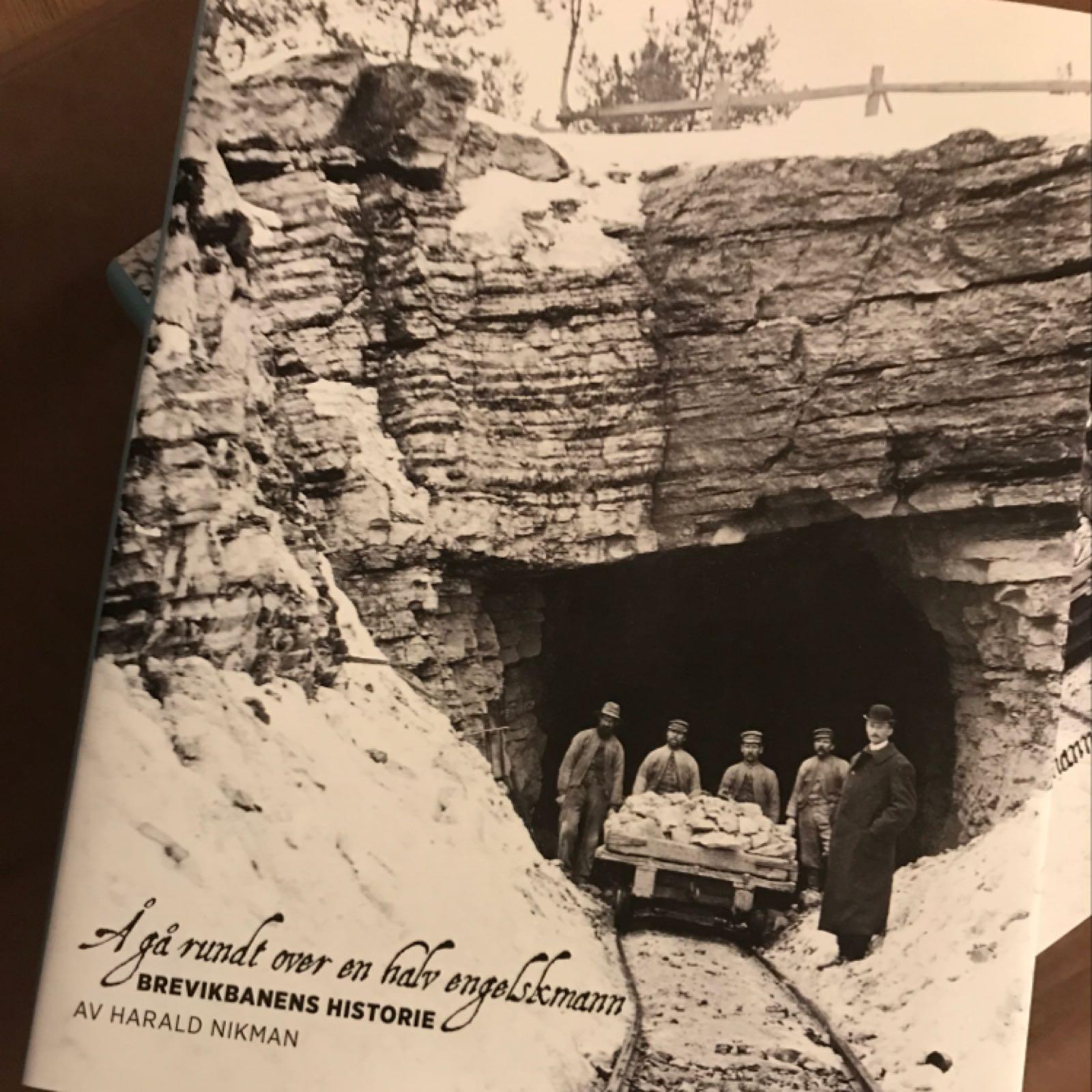 Brevikbanens historie