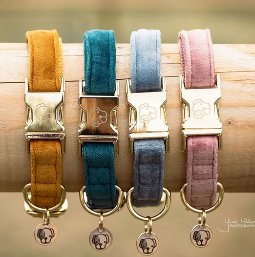 Dog Collar Velvet Kentucky Dogwear