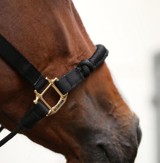Control Halter Nylon Black Kentucky Horsewear