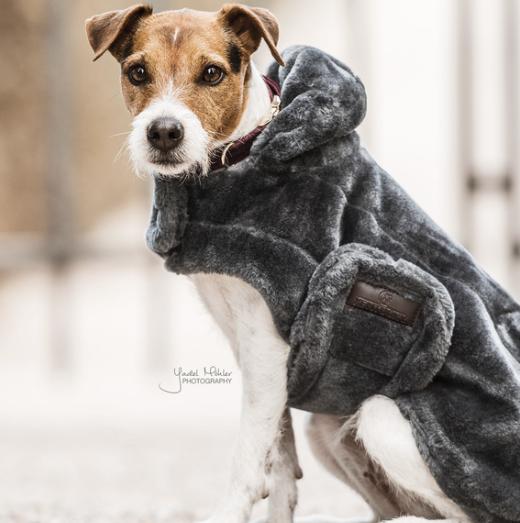 Dog Rug Fake Fur Kentucky Dogwear