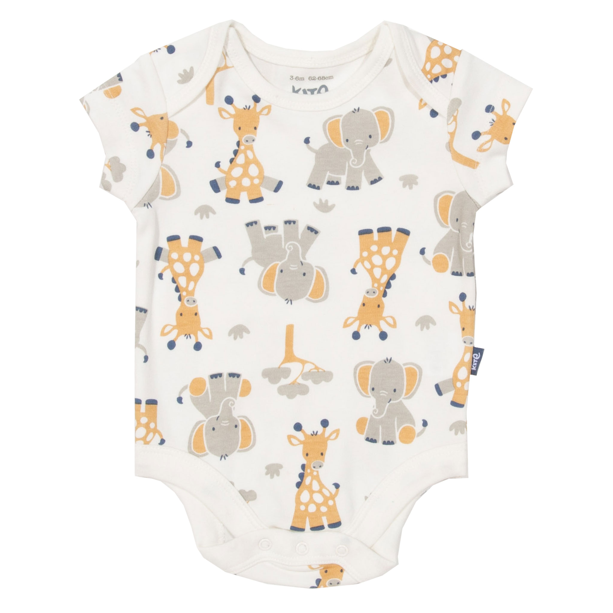Kite Giraffe Set