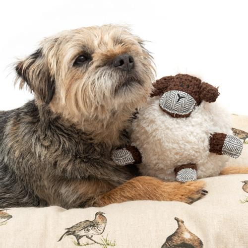 Mutts & Hounds Toys