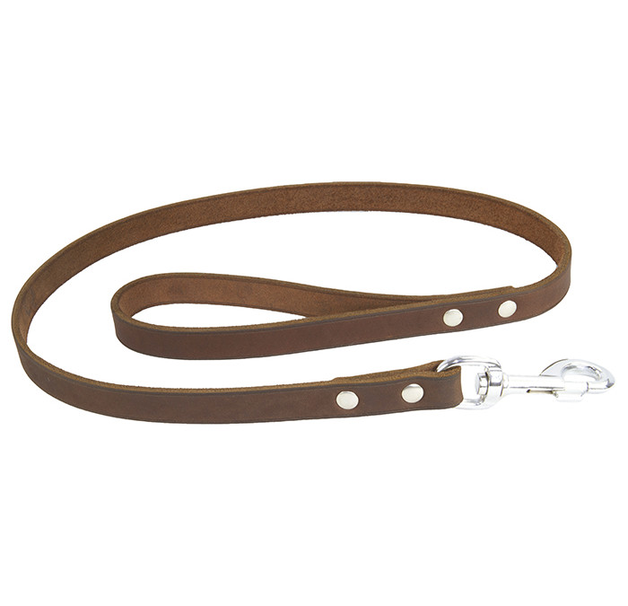 Earthbound Soft Country Leather Leads