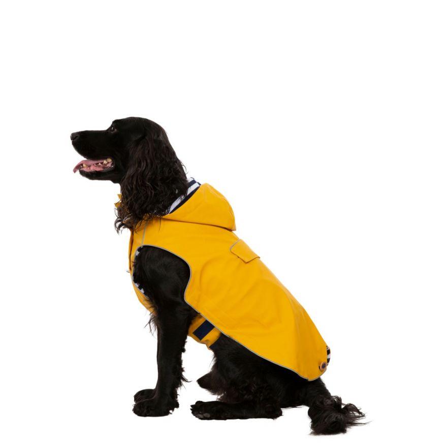 Trespaws Coats