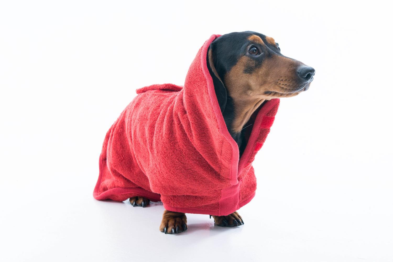 Ruff & Tumble Drying Coat