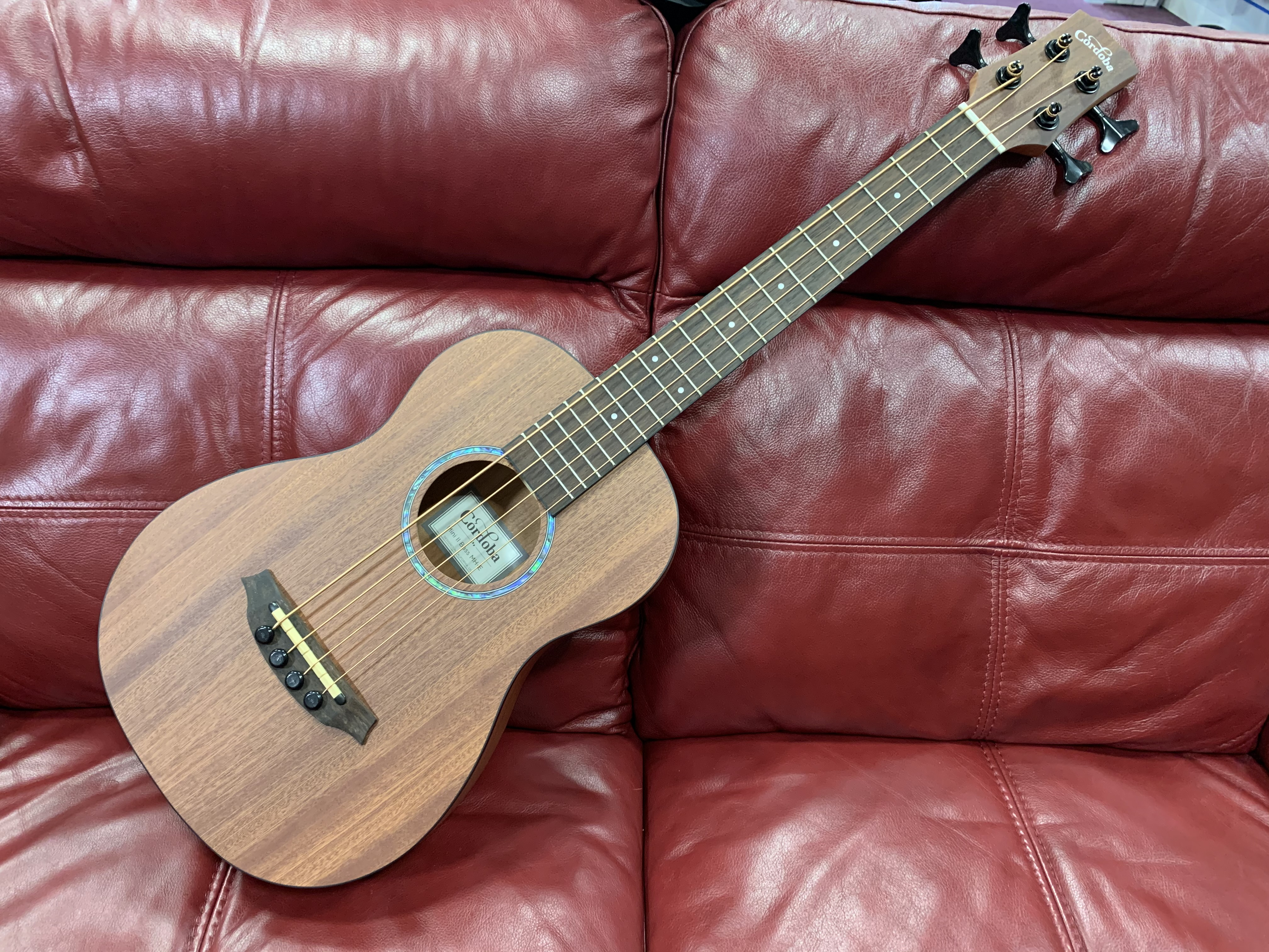 Cordoba Electro Acoustic Mini II Bass!!