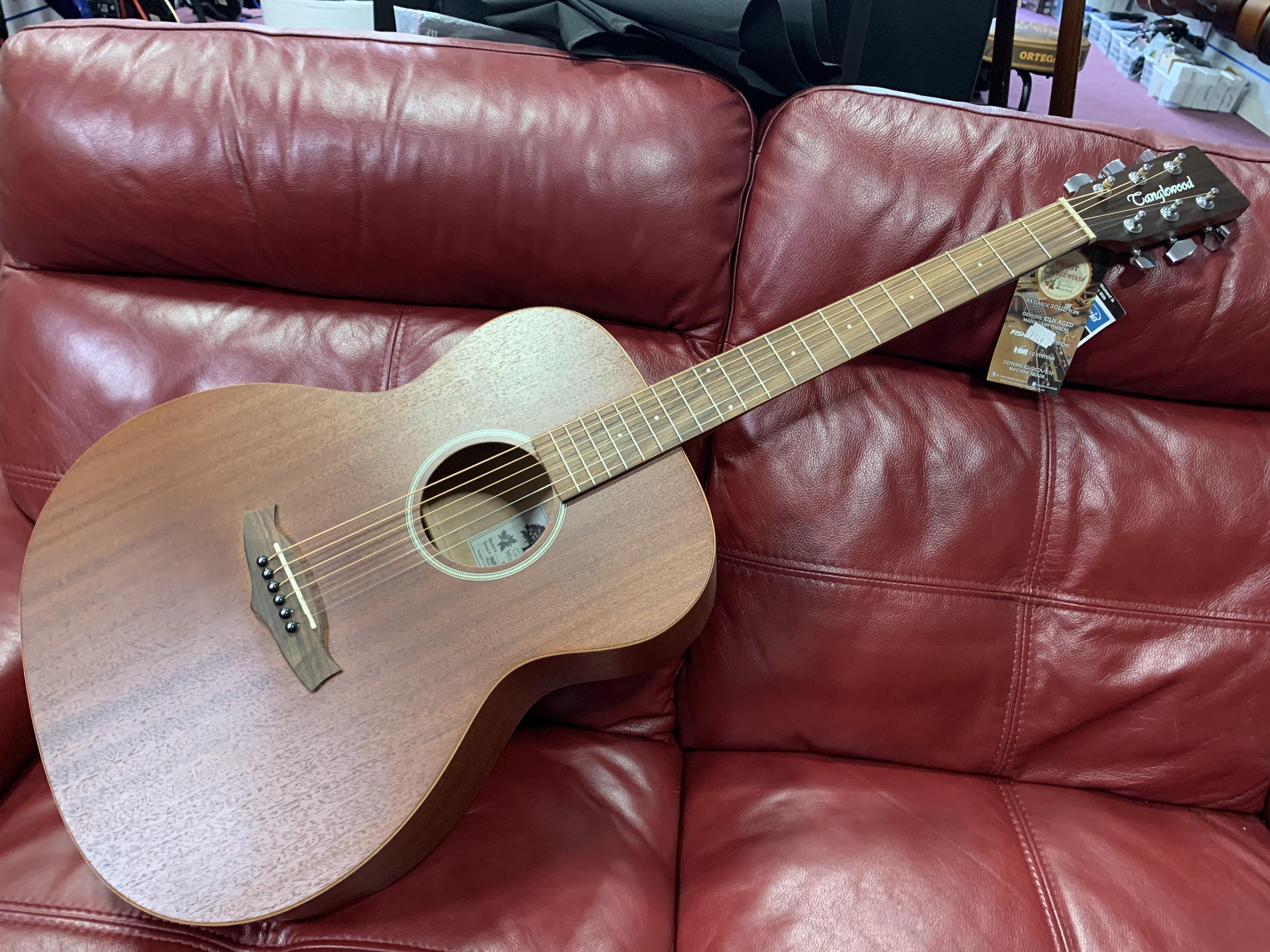 Tanglewood Winterleaf TW2 Electro Acoustic Guitar