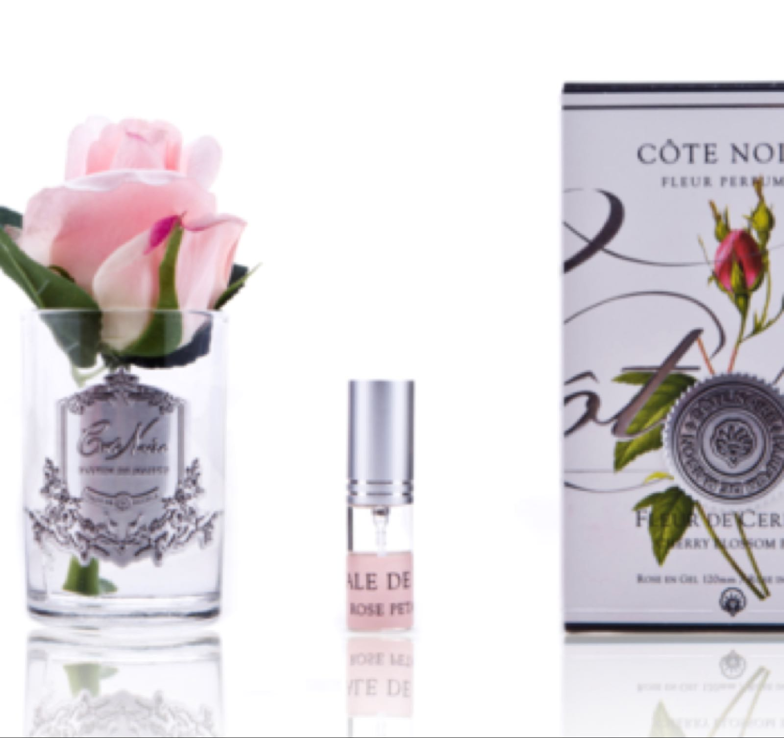 Cote noire french pink small rose bud with fragrance
