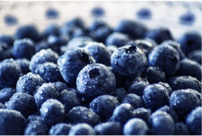 Frozen Blueberries (Kg)