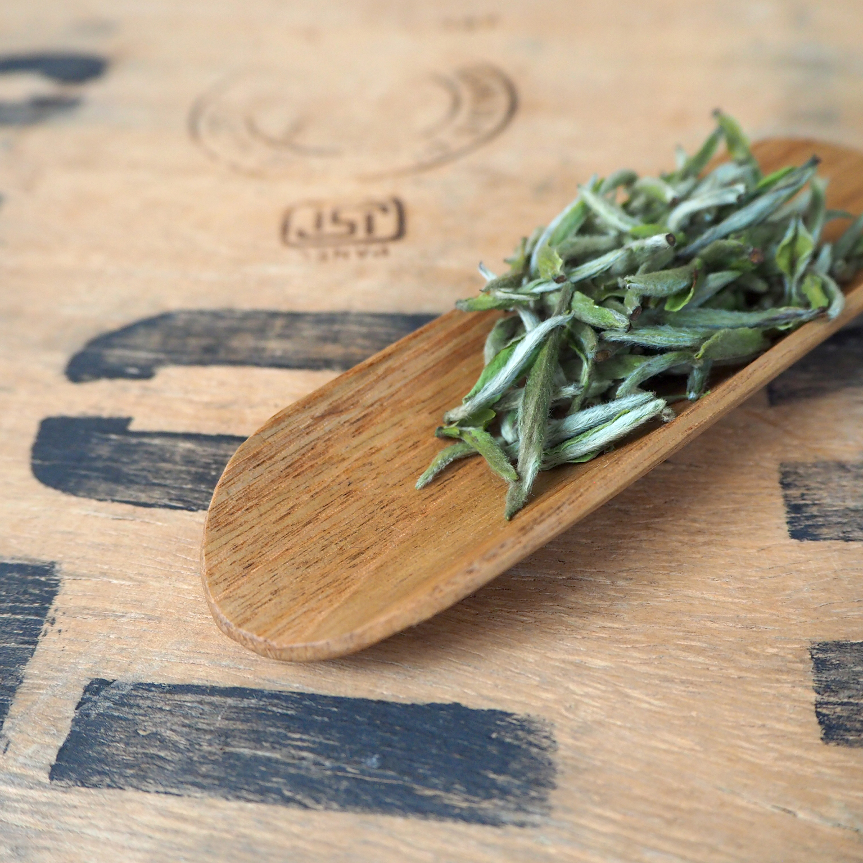Chestnut Tea Scoop by Takahashi McGil