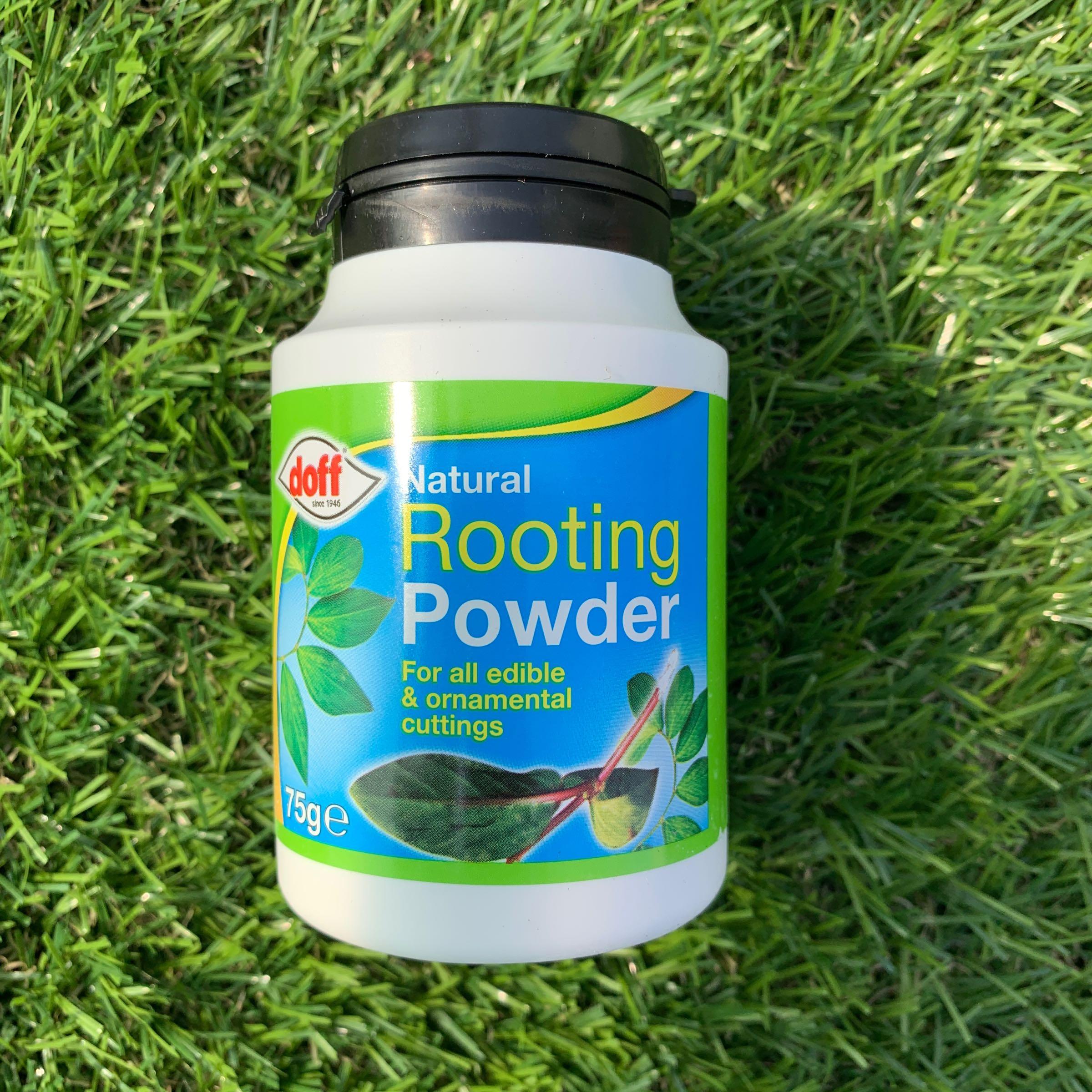 Doff Natural Rooting Powder - 75g
