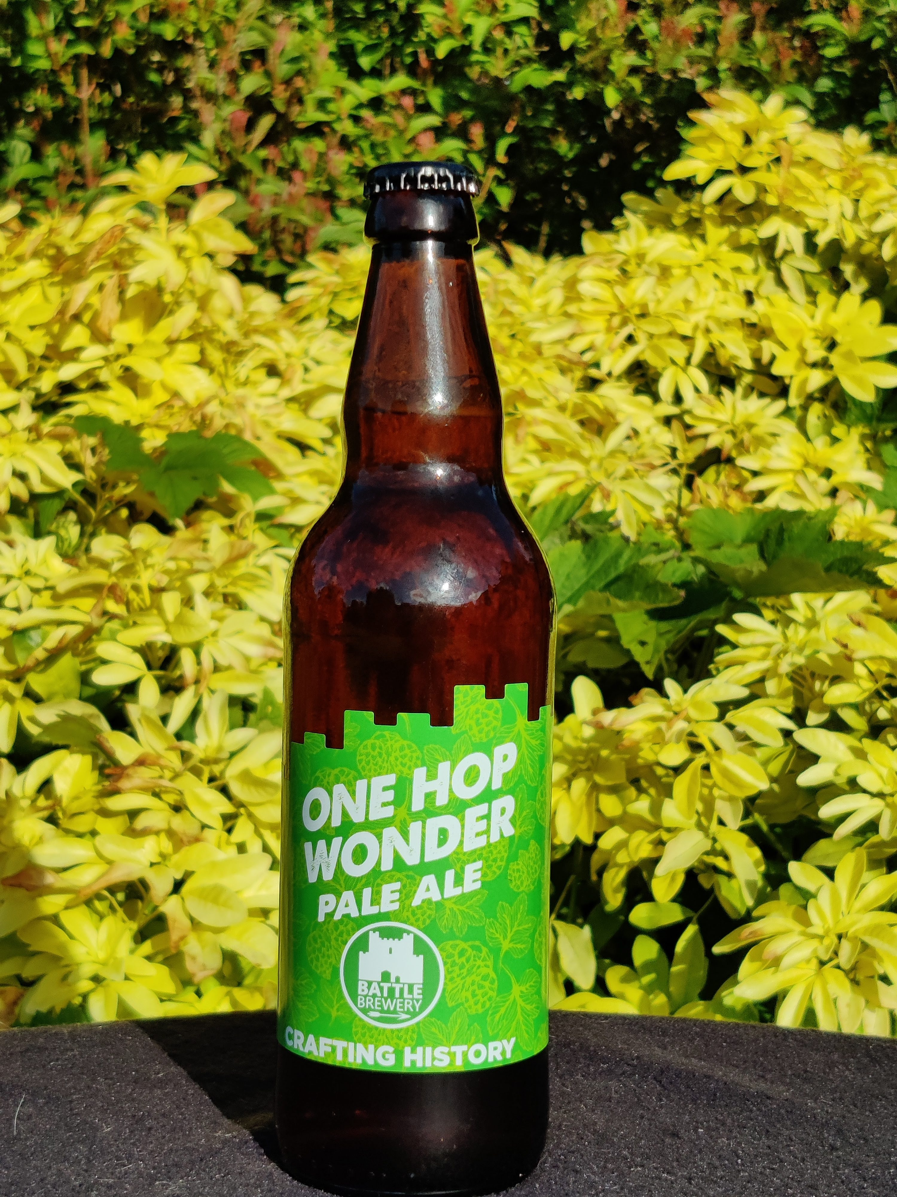 One Hop Wonder (500ml) 4.3%