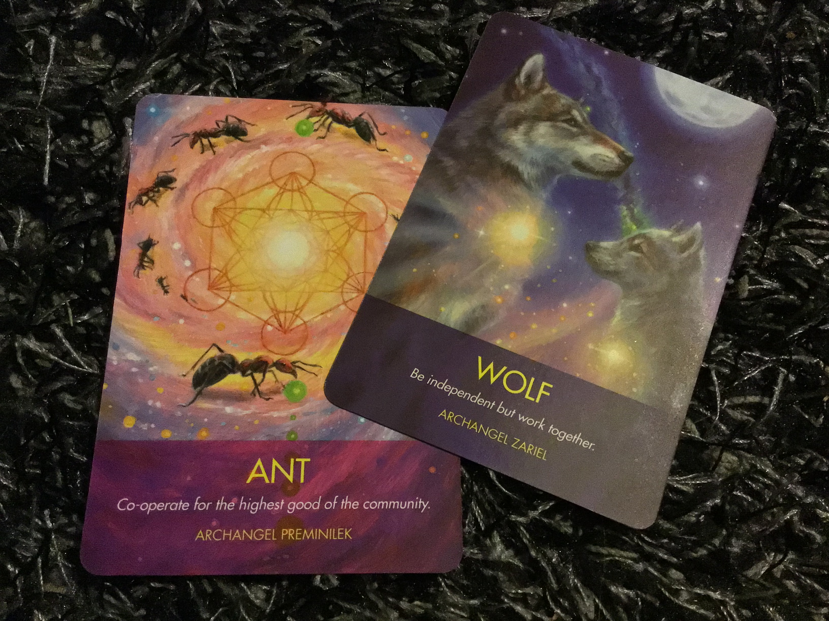 Archangel Animal Oracle Cards + booklet - Diana Cooper