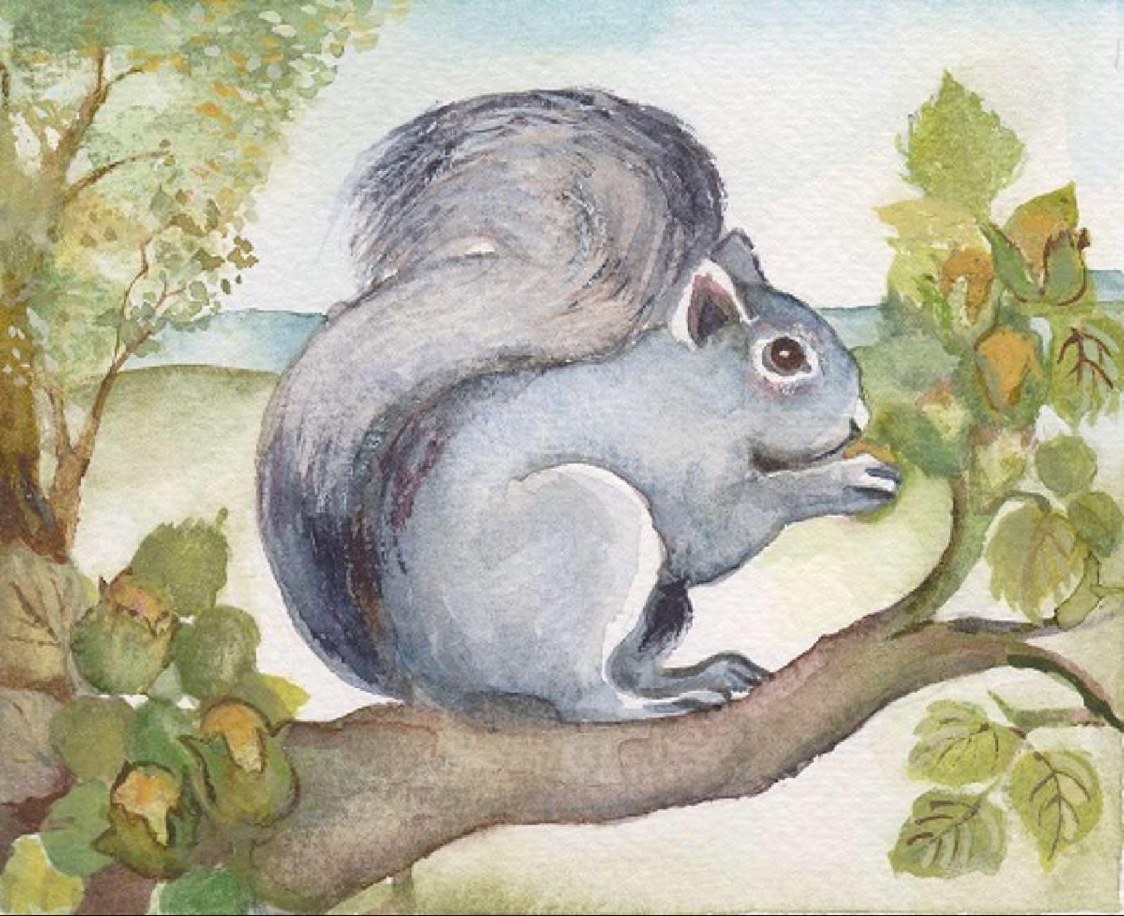'Grey Squirrel' Furzedown Gallery Mini Card