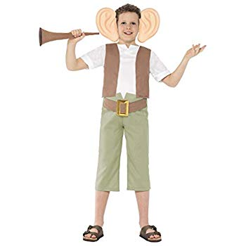 BOYS/TV & FILM/Roald Dahl The BFG Costume, Green