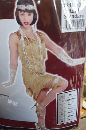 WOMAN/DECADES/1920'S/FLAPPER DRESS