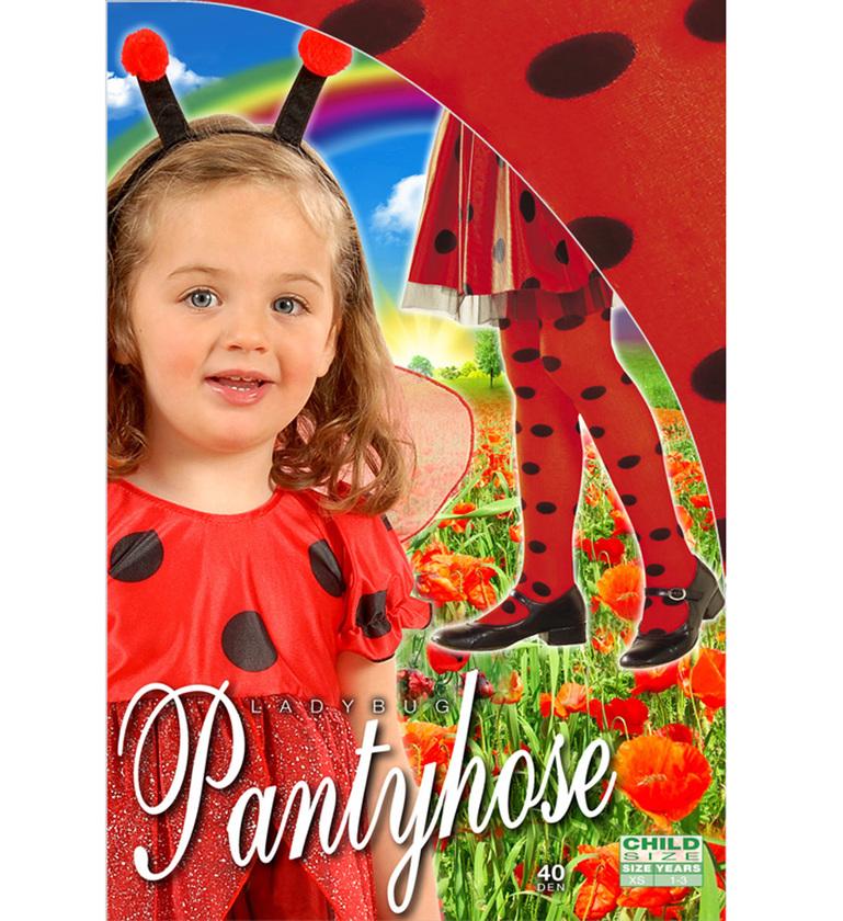 GIRLS/TIGHTS/LADYBUG PANTYHOSE - RED/BLACK SPOT Childrens