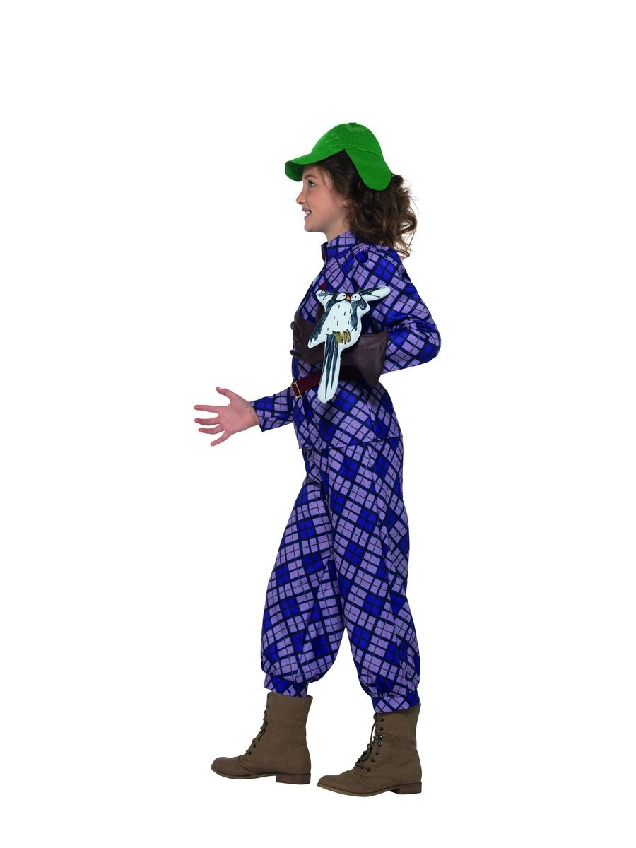 GIRLS/FILM & TV/David Walliams Deluxe Awful Auntie Costume, Purple