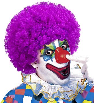 WIG/NOVELTY/PURPLE CLOWN