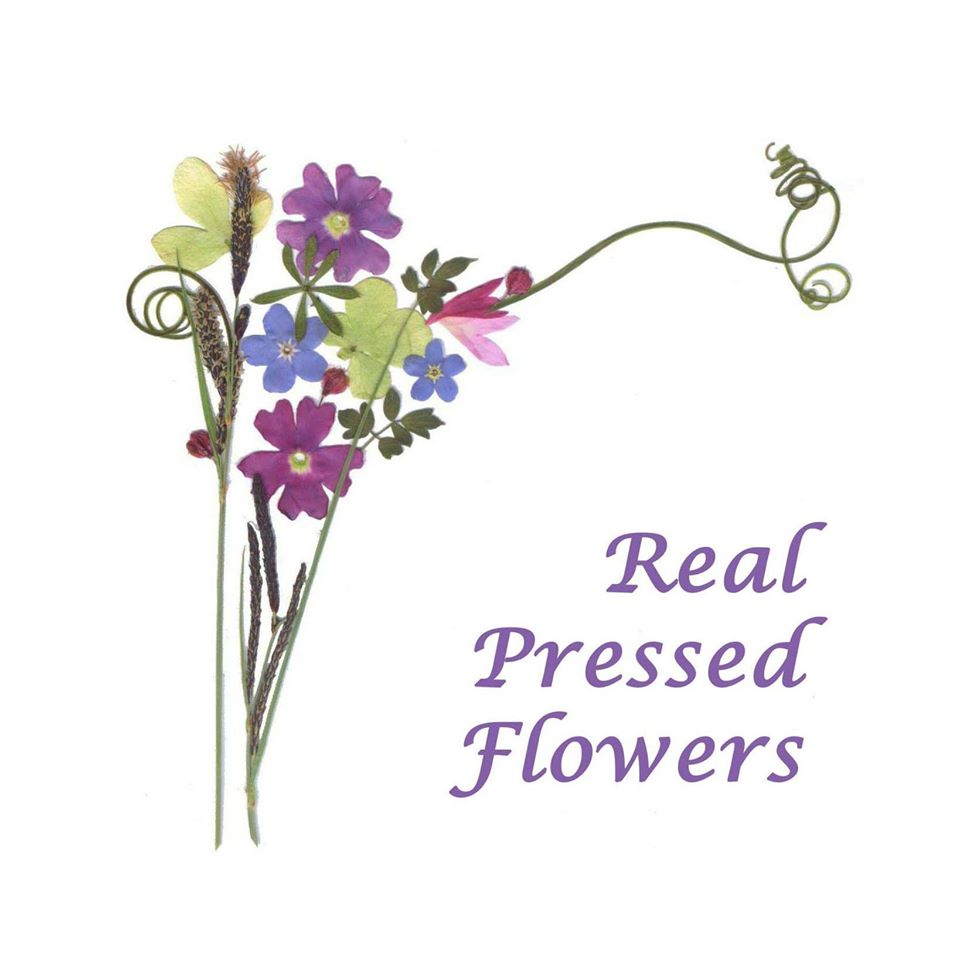 Real Pressed Flowers