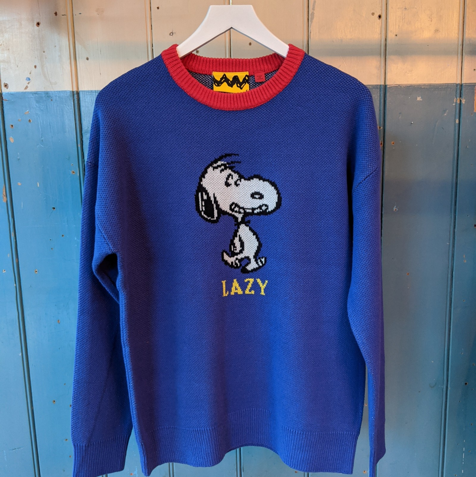 Lazy Oaf x Peanuts- Blue and Red Jumper