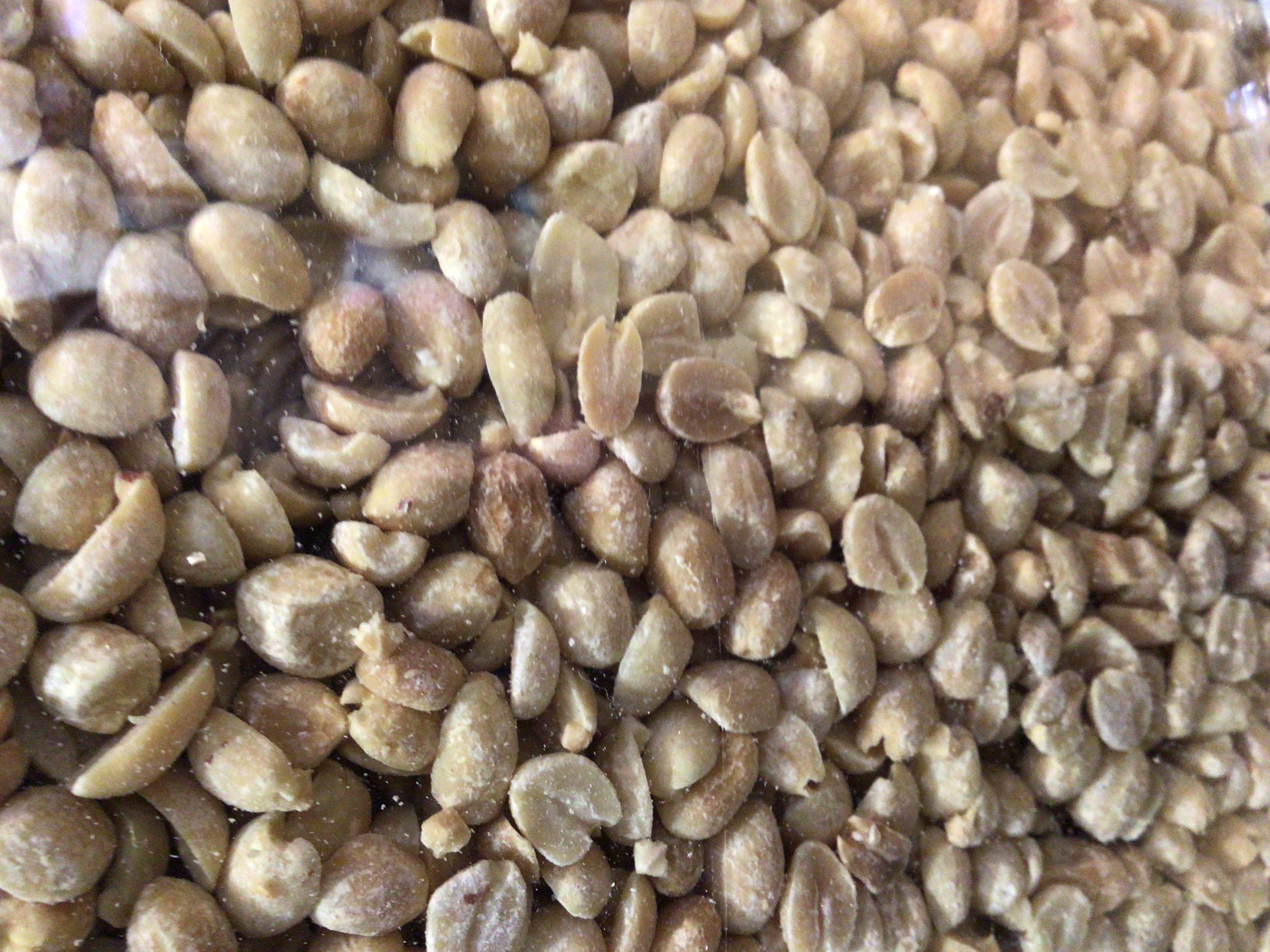 Organic Peanuts (Blanched & Roasted)