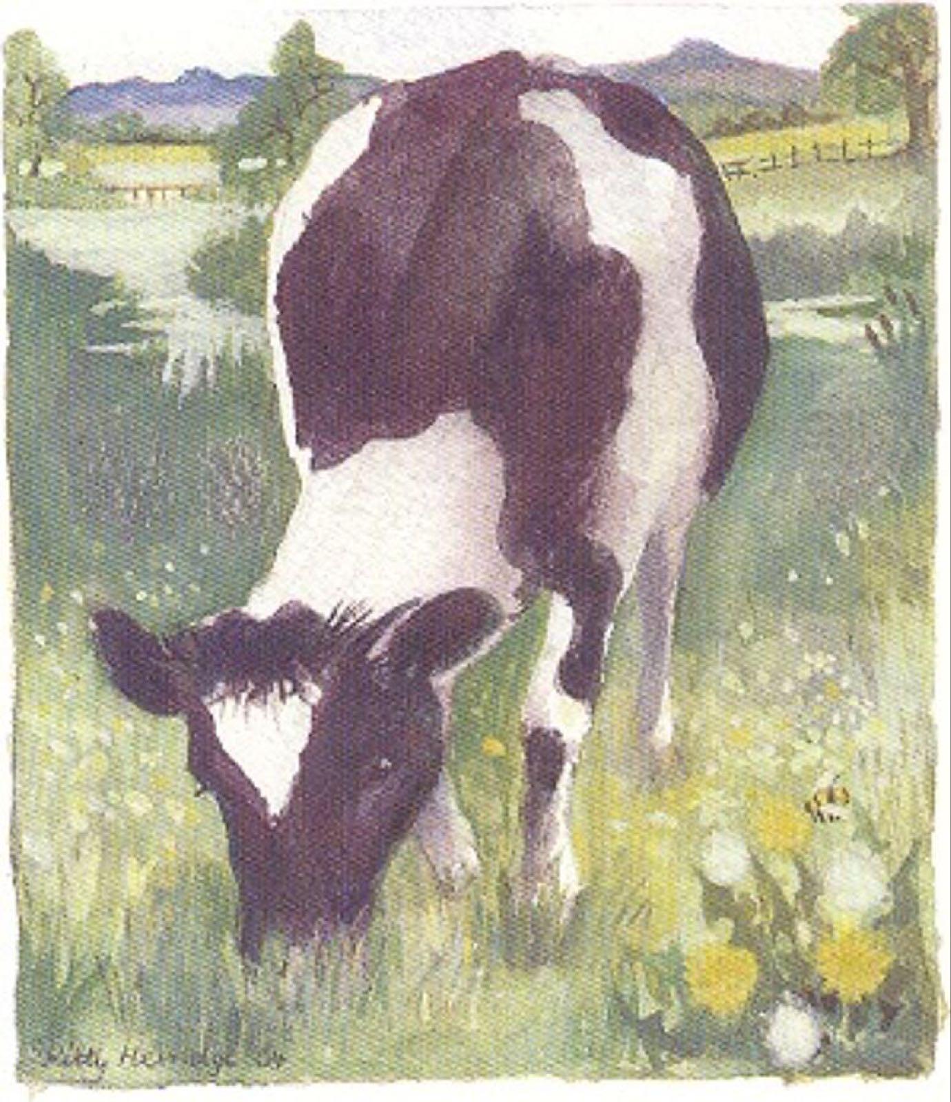 'Cow in the Meadow' Furzedown Gallery Mini Card