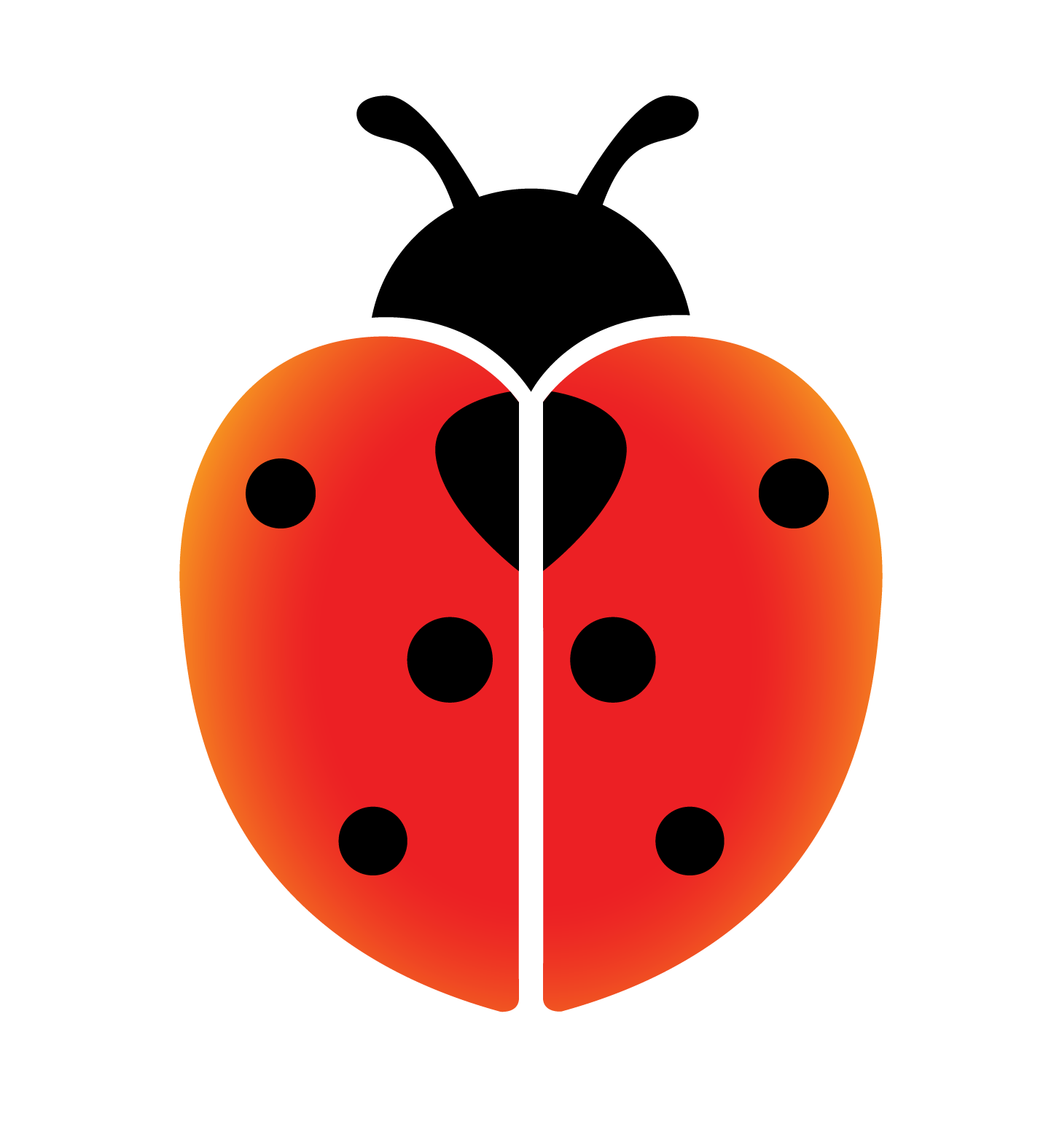 Ladybird First Aid Ltd
