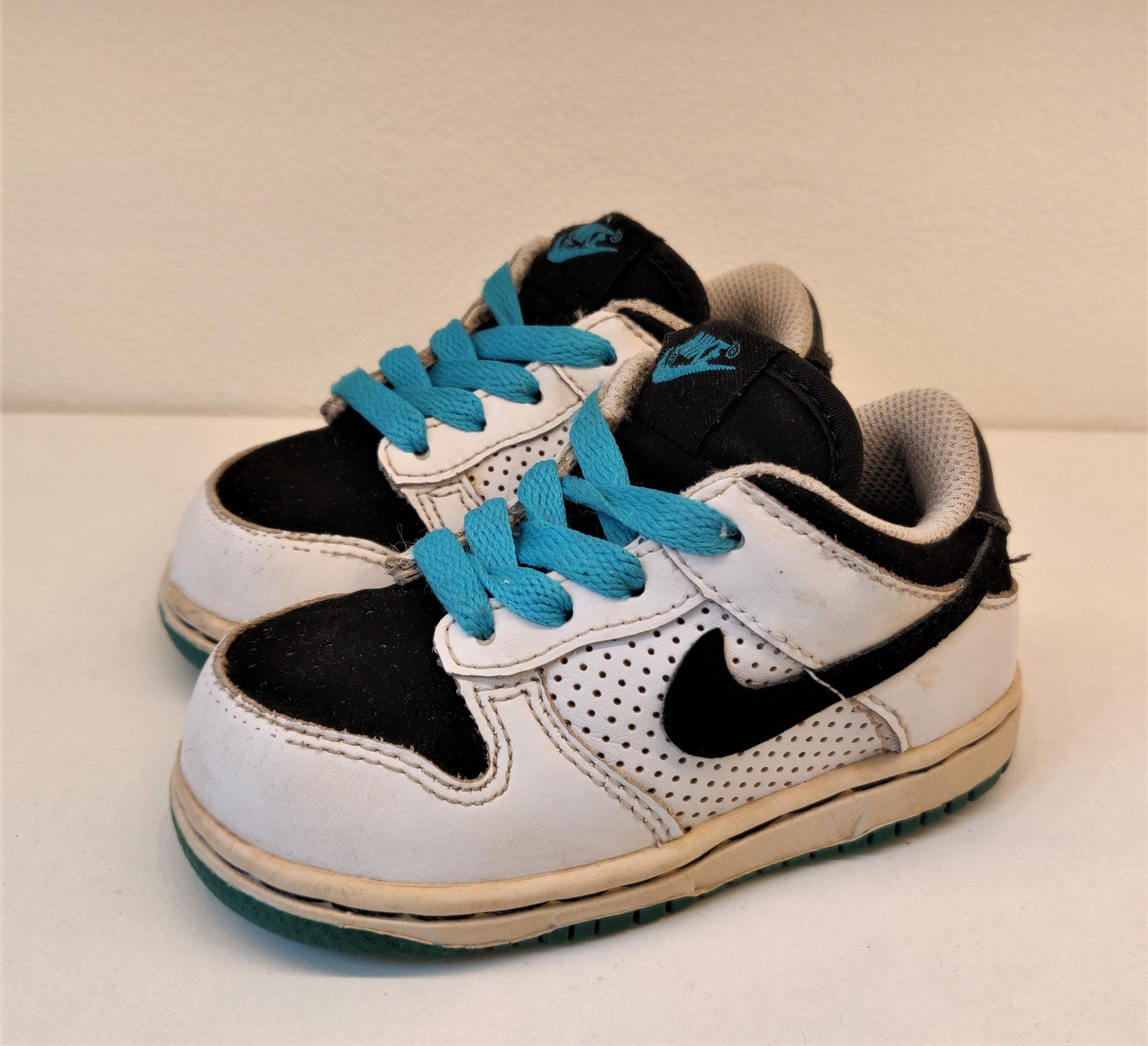 Nike Dunk Kids