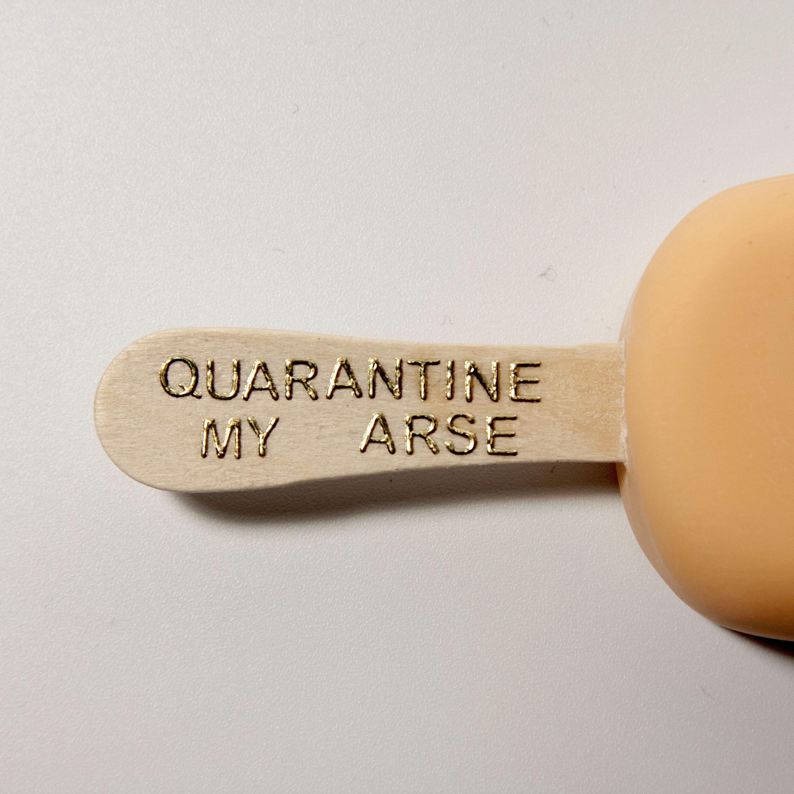 Quarantine My Arse