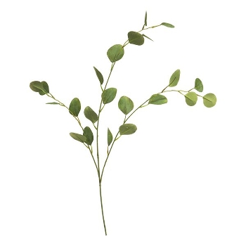 Kunstig gren, Eucalyptus