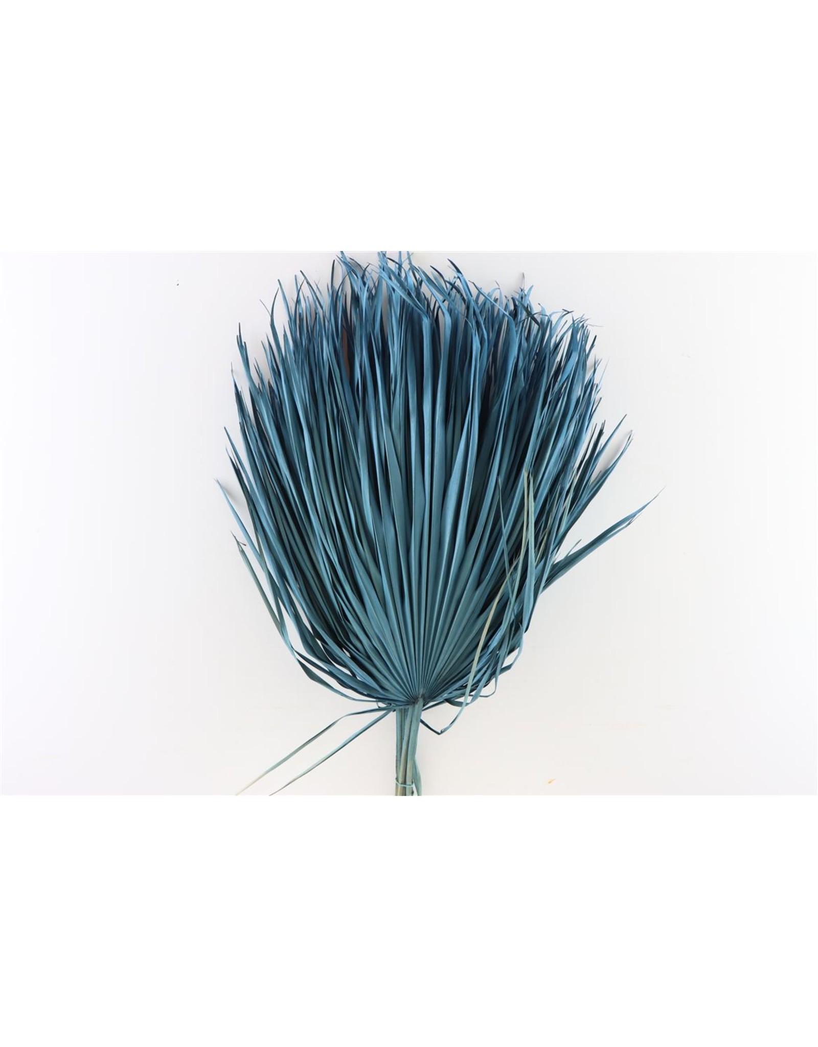 Tørrede blomster, palme blå