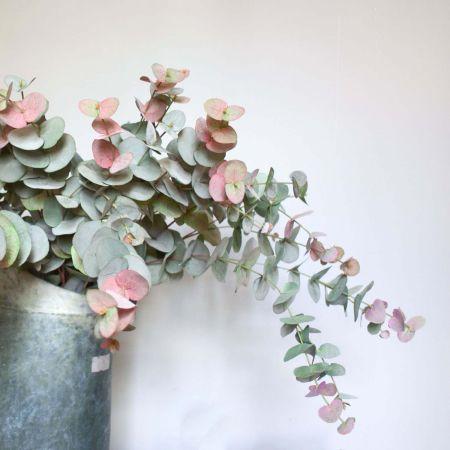 Kunstig eukalyptus gren pink