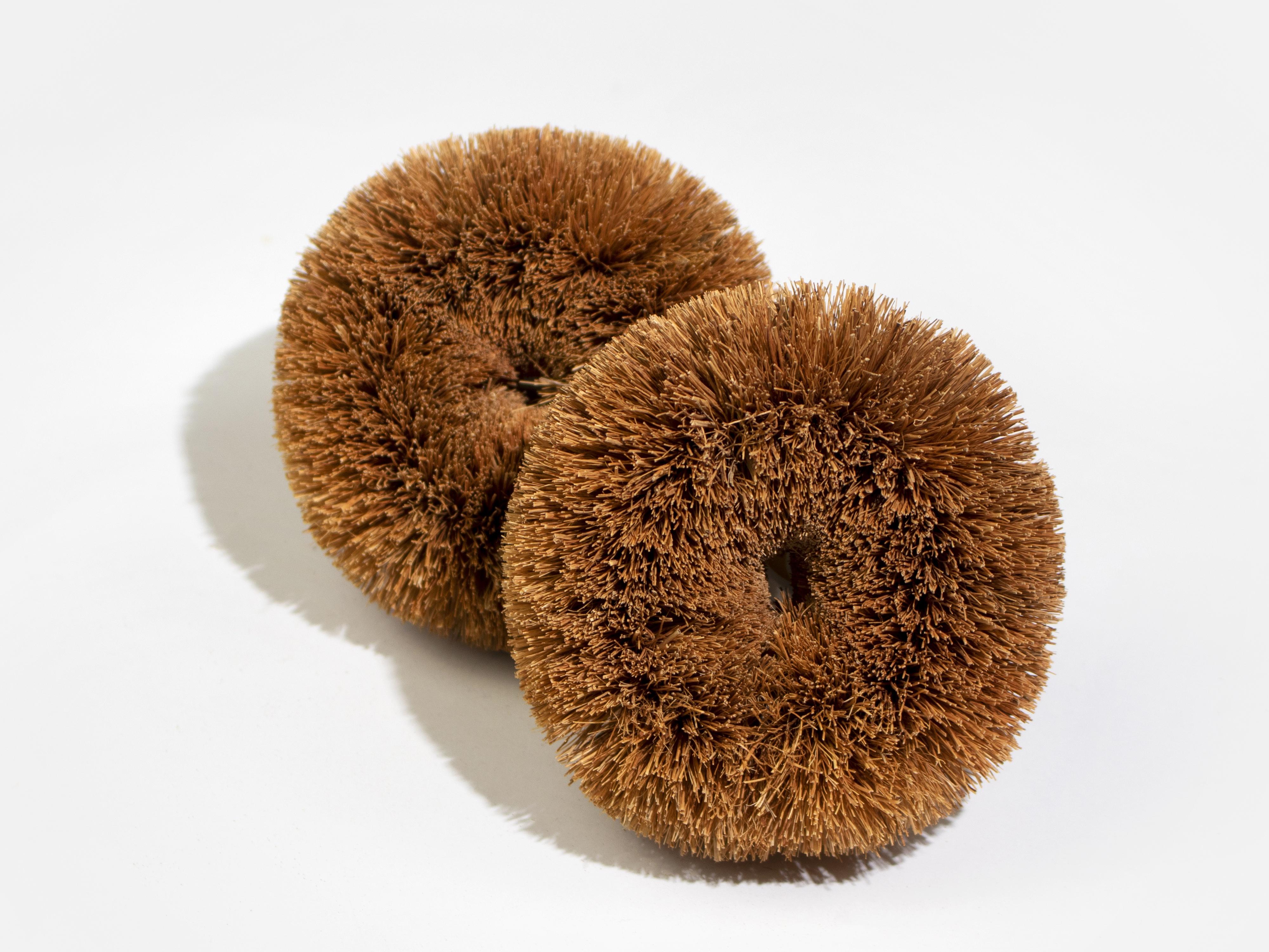 Coconut Scourers (Pack of 2)