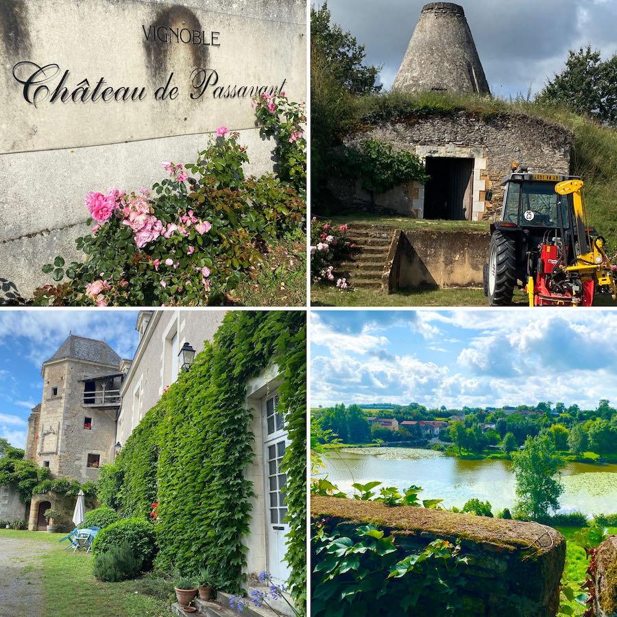 """- EVENT - 12.11.21 - """"Bio-Weinabend Chateau de PASSAVANT"""", Franz. 4-Gang Menü mit 5 Demeter-Weinen der Loire, 19h"""