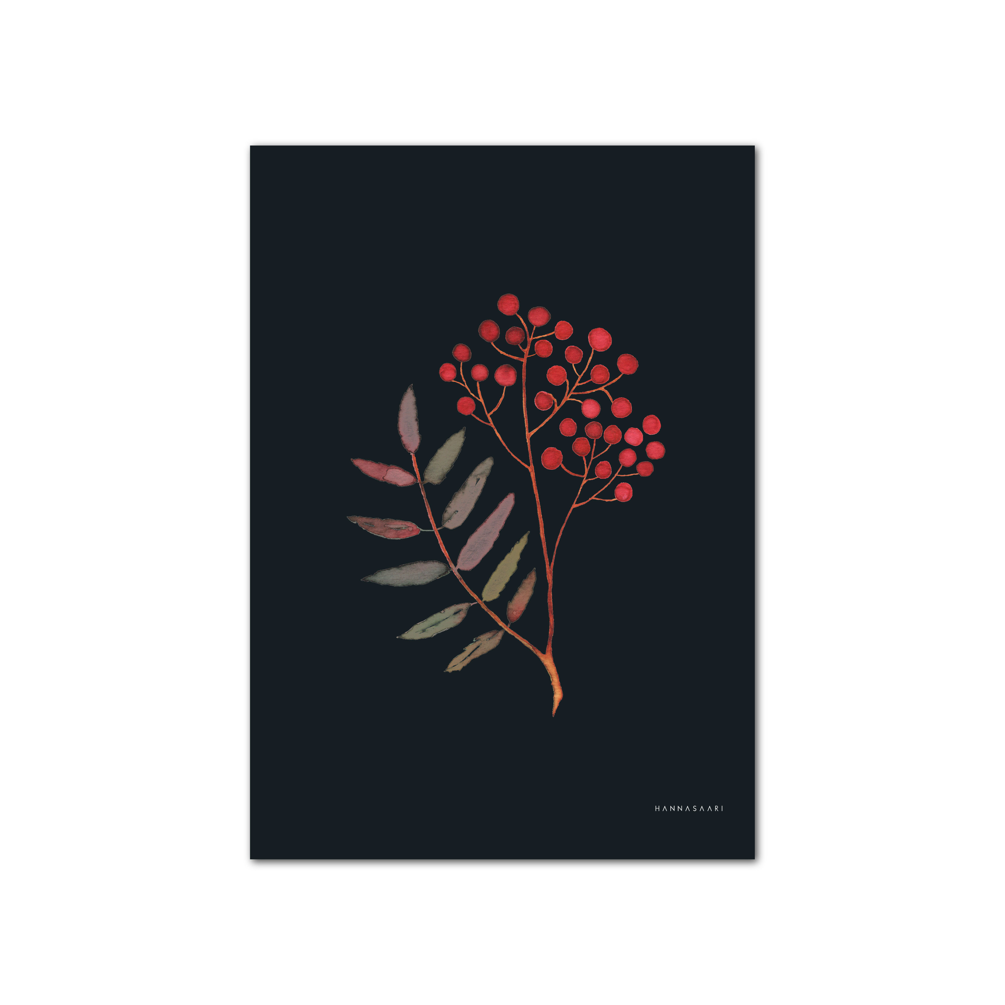 Pihlaja kortti-poster A4